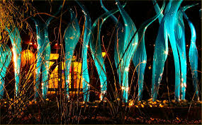 botanical gardens lights az soul amp chihuly glass at night chihuly glass sculpture exhibit