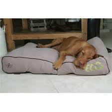 Washable Dog Beds Large Dog Beds Best Images Collections Hd For Gadget Windows Mac