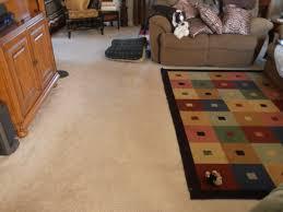 modern minimalist living room carpet design