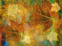 autumn pumpkin wallpaper widescreen vintage fall wallpaper wallpaperhdc com