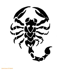 scorpion tribal tattoo sketch photo 3 photo pictures and