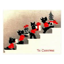 terrier gifts on zazzle