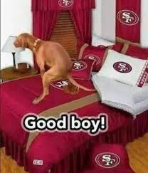 Dog Poop Meme - 22 meme internet good boy dog pooping on bed 49ers