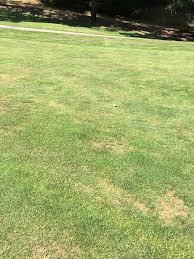 Tilden Park Map Tilden Park Golf Course Berkeley Ca United States Swing By Swing