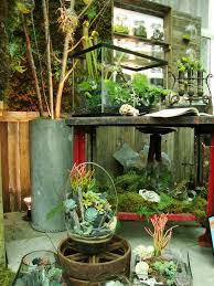 728 best garden terrarium images on pinterest garden