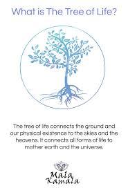 tree of symbol meaning birthday ideas
