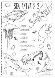 74 free esl sea animals worksheets