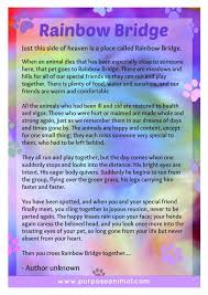 Poems Of Comfort For Loss 84 Best Pet Loss U0026 Grief Images On Pinterest Pet Loss Grief Dog