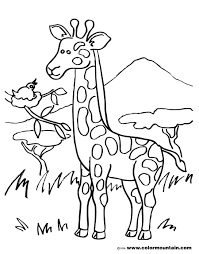 giraffe coloring pages printable talking giraffe printable picture create a printout or activity
