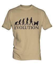 afghan hound of america afghan hound evolution of man mens t shirt tee top dog kuchi