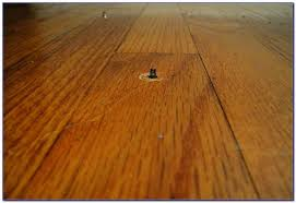 Squeaky Floor Repair Hardwood Floor Installation Carpet Screws Squeaky Floor Screws