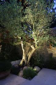 11 creative ways to use lighting in the garden 25 backyard
