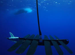 Undersea Cables How Russia Targets by Underwater Drones Being Used To Detect Enemy Submarines Piracy