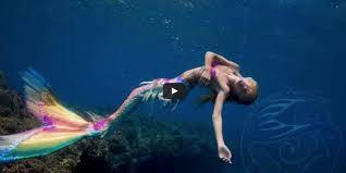 real mermaid wallpaper wallpapersafari