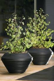 best planters crescent garden self watering hydraz club