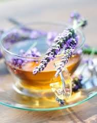 lavender tea health benefits of lavender tea step into my green world stepin2