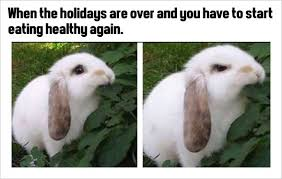 Funny Holiday Memes - funny holiday memes eating healthy loldamn com