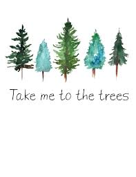 take me to the trees watercolor pine trees print watercolor