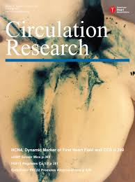 fibroblast growth factor homologous factors modulate cardiac