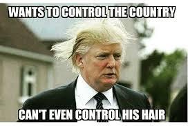 Hair Meme - presidential heir apparent donald trump funniest hair memes popdust