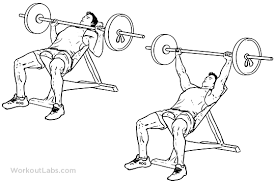 Proper Bench Form Incline Barbell Bench Press Illustrated Exercise Guide