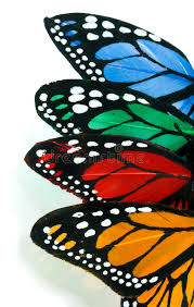 vertical butterfly stack left stock image image of colourful