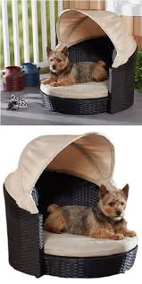 outdoor canopy dog bed deck design and ideas