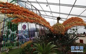 Botanical Garden Orchid Show Shanghai International Orchid Show To Open Cctv News Cctv