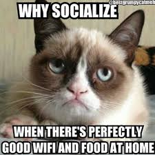 Good Grumpy Cat Meme - the 21 best grumpy cat memes and quotes about love and life grumpy