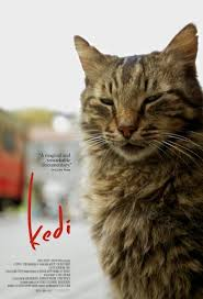 jadwal film everest 2015 18 best jadwal tayang movie terbaru images on pinterest film