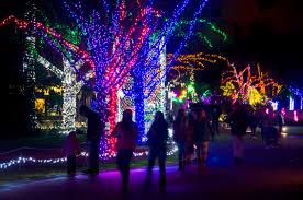Zoo Lights Oregon by Christmas Lights Park Christmas Lights Decoration