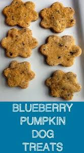 christmas dog treats gourmet dog treats christmas paw prints