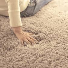 aliexpress com buy oval floormat carpet long hair shaggy mat