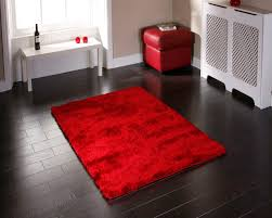 Bathroom Rug Ideas by Red Bathroom Rug Rugs Decoration