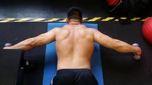 Lower Back Pain Bench Press The Truth About Your Benching Pain It U0027s Not Biceps Tendonitis