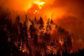 Wildfire Western Us by Western U S Cloaked In Smoke As Wildfires Continue To Spread Wjla