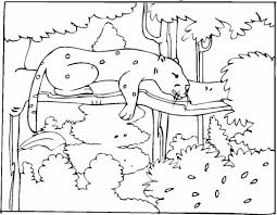 cheetah cub coloring pages supercoloring 420295 coloring pages