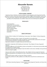 Google Templates Resume Google Resume Template