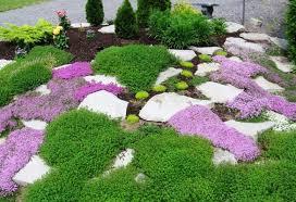 garden ideas landscape ideas small front yard small front yard