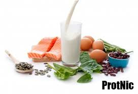 list of all the foods high in protein protnic
