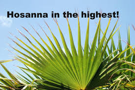 palms for palm sunday palm sunday of lent year b lectionary bible notes christian