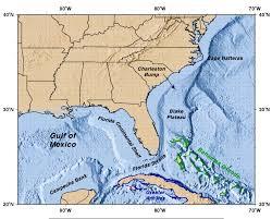 map of gulf coast florida the florida current