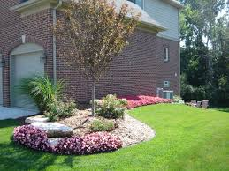 Backyard Trees Landscaping Ideas by Begonias Ornamental Grass Shrub Rose And Crab Apple Tree Off