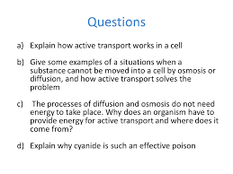 osmosis homework worksheet