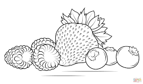 strawberries raspberries and blueberries coloring page free