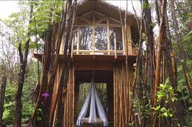 dreamy tropical tree house treehouses for rent in fern forest