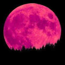 full strawberry moon what to expect from the strawberry moon on june 2nd evolve ascend