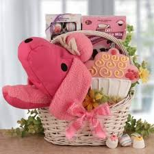birthday gift delivery 16 best gift baskets for pets images on gift basket