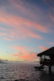 honeymoon moorea and tahiti u2014 skyline blossoms