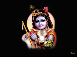 computer wallpaper krishna ultra hd wallpaper lord krishna best wallpaper download